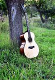 Akustisk gitarr nära ett träd i trädgården royaltyfria bilder