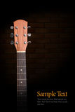 akustisk gitarrhals Royaltyfria Bilder