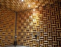 Akustisk kammare royaltyfria foton