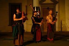 Akustisk konsert av den barbar- rörmusikbandet Fotografering för Bildbyråer