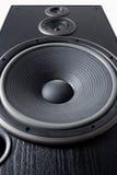 akustiskt system Royaltyfri Bild