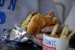 AKUSTYCZNY fasta food łańcuch Obrazy Stock