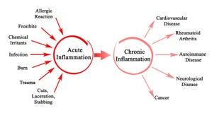 Akut och kronisk inflammation stock illustrationer
