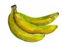 Akvarellgrupp av bananer Royaltyfri Fotografi