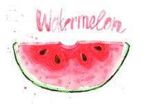 Akvarellillustration med den röda vattenmelonskivan Royaltyfri Fotografi