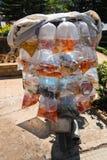 Akvariefisk som visas i till salu plastpåsar arkivbild