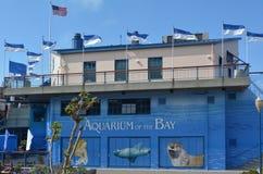 Akvarium av fjärden i San Francisco - Kalifornien royaltyfri bild