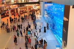 Akvarium i den Dubai gallerian, världs största shoppinggalleria Arkivfoton