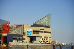 Akvarium som buidling Arkivbild