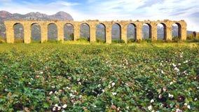 Akvedukt på Aspendos i Antalya, Turkiet Fotografering för Bildbyråer
