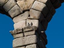 akvedukt segovia royaltyfri foto
