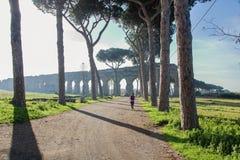 Akvedukten parkerar på den Appia gatan Arkivfoto