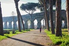 Akvedukten parkerar på den Appia gatan Royaltyfri Fotografi