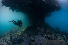 Akwalungu nurek i Wygryziona wapień wyspa zdjęcia royalty free