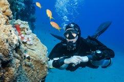 Boczny góra akwalungu nurek Obraz Royalty Free