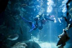 Akwalungu nurek przy podwodnym obraz stock