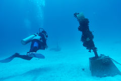 Akwalungu nurek przy Podwodnym tsunami pomnikiem Zdjęcia Royalty Free