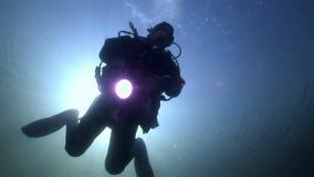 Akwalungu nurka sylwetki latarka na tła odbicia świetle słonecznym podwodnym zbiory wideo