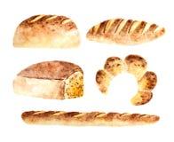 Akwarela świeżego chleba piekarnie ilustracja wektor