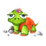 Akwarela żółw Zdjęcie Royalty Free