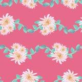 Akwarela asteru kwiatu girlandy światło - różowa złocista cyraneczka na różowym bezszwowym wzorze ilustracja wektor