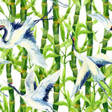 Akwarela azjatykci dźwigowy ptasi bezszwowy wzór ilustracja wektor