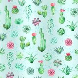 Akwarela bezszwowy wzór paskował tło z sukulentami i kaktusem Zdjęcie Royalty Free