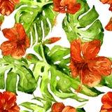 Akwarela bezszwowy wzór Ręka Malująca ilustracja Tropikalni liście i kwiaty Zwrotnika lata motyw z poślubnika wzorem Zdjęcie Stock