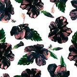 Akwarela bezszwowy wzór Ręka Malująca ilustracja Tropikalni liście i kwiaty Zwrotnika lata motyw z poślubnika wzorem royalty ilustracja