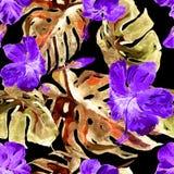Akwarela bezszwowy wzór Ręka Malująca ilustracja Tropikalni liście i kwiaty Zwrotnika lata motyw z poślubnika wzorem Obraz Royalty Free