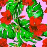 Akwarela bezszwowy wzór Ręka Malująca ilustracja Tropikalni liście i kwiaty Zwrotnika lata motyw z poślubnika wzorem Zdjęcia Stock