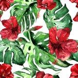 Akwarela bezszwowy wzór Ręka Malująca ilustracja Tropikalni liście i kwiaty Zwrotnika lata motyw z poślubnika wzorem Obrazy Stock
