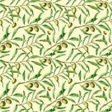 Akwarela bezszwowy wzór z gałązkami oliwnymi Ręka malował kwiecistego ornament z oliwną jagodą i gałąź z royalty ilustracja