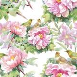 Akwarela bezszwowy wzór z kolorowymi kwiatami i liśćmi na białym tle, akwarela kwiecisty wzór, kwitnie wewnątrz Zdjęcia Royalty Free