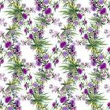 Akwarela bezszwowy wzór z kolorowymi kwiatami i liśćmi na białym tle, akwarela kwiecisty wzór, kwitnie wewnątrz Obrazy Royalty Free