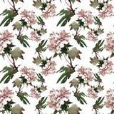 Akwarela bezszwowy wzór z kolorowymi kwiatami i liśćmi na białym tle, akwarela kwiecisty wzór, kwitnie wewnątrz Zdjęcia Stock