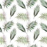 Akwarela bezszwowy wzór z palmą opuszcza z ziarnami royalty ilustracja