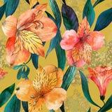 Akwarela bezszwowy wzór z pomarańcze, czerwień kwiatami i liśćmi na żółtym tle, Fotografia Stock