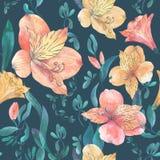 Akwarela bezszwowy wzór z pomarańcze, czerwień kwiatami i liśćmi na ciemnym tle, Zdjęcia Stock