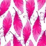 Akwarela bezszwowy wzór z ptasimi piórkami Obrazy Stock