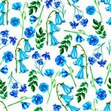 Akwarela bezszwowy wzór z różnymi błękitnymi kwiatami, lobelia, lna błękit, kampanula ilustracji