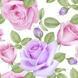 Akwarela Bezszwowy wzór z różami Zdjęcia Stock