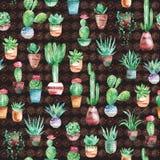 Akwarela bezszwowy wzór z sukulentami i kaktusem w garnkach na ciemnym tle Fotografia Stock