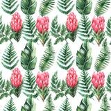 Akwarela bezszwowy wzór z tropikalnymi liśćmi i kwiatami greenfield sukulent projekta elementu kwiecisty ilustraci wektor Doskona ilustracji