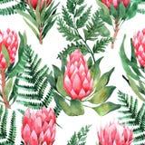 Akwarela bezszwowy wz?r z tropikalnymi li??mi i kwiatami greenfield sukulent projekta elementu kwiecisty ilustraci wektor Doskona ilustracji