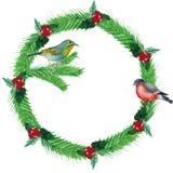 Akwarela Bożenarodzeniowy wianek jedlinowe gałąź, czerwone jagody z ptakami, royalty ilustracja