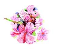 Akwarela bodziszka kwiat przedmiotem t?a ?cie?ki wycinek odizolowane white zdjęcia royalty free
