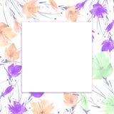 Akwarela bukiet kwiatu maczek, chabrowy ilustracji