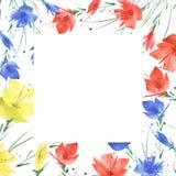 Akwarela bukiet kwiaty, maczek, chabrowy, peon royalty ilustracja