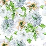 Akwarela bukiet z kwiatami Hrysanthemum ślaz Wzrastał beak dekoracyjnego latającego ilustracyjnego wizerunek swój papierowa kawał Zdjęcia Stock